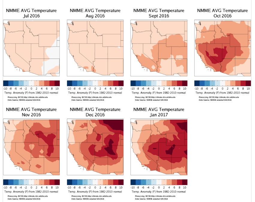 Seasonal Forecast Dataset